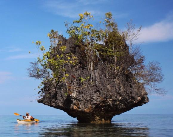 Mushroom Islands